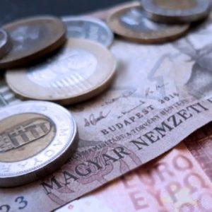 Az élelmiszerlánc-felügyeleti díj befizetési határideje lejár