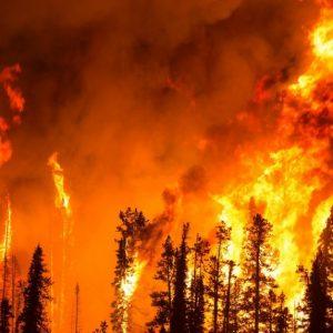 Az alföldön tűzgyújtási tilalmat rendeltek el